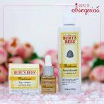burts bees daily cream